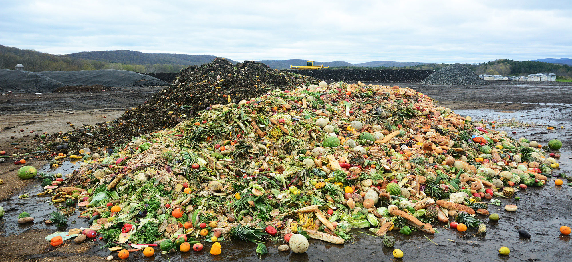 Food Scraps are Converted into Compost