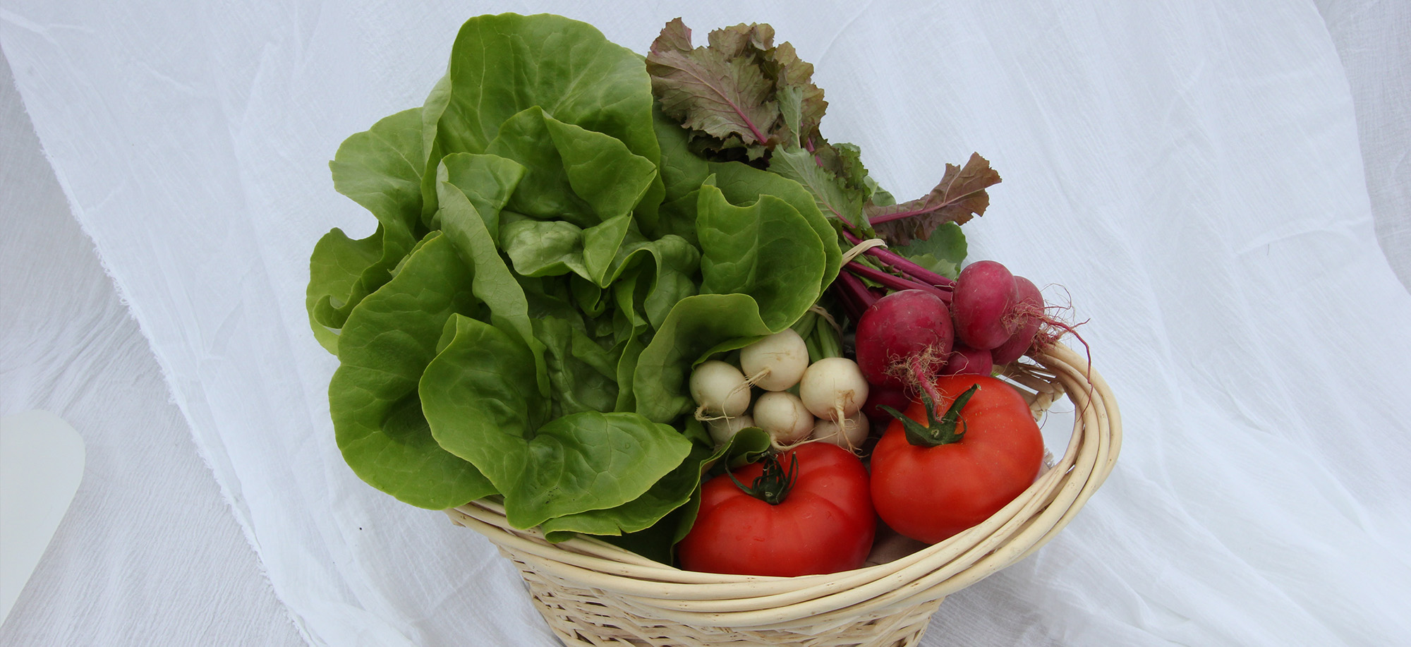 We Offer A Seasonal Variety of Fresh Produce