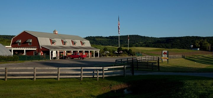 McEnroe Farm Market is Located on Route 22 between Amenia & Millerton New York