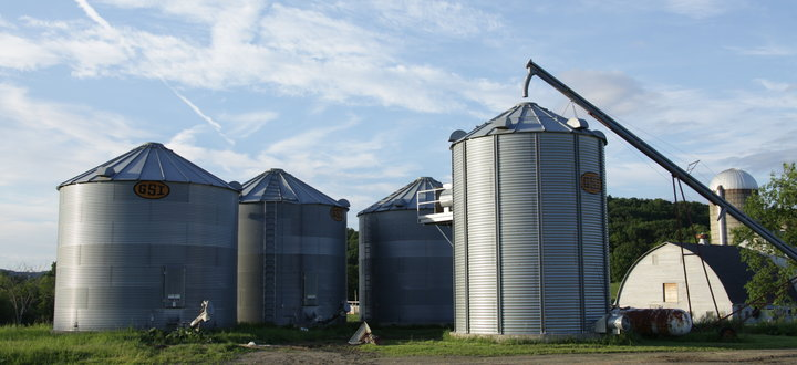 McEnroe's Organic Grain is Used to Feed Our Livestock