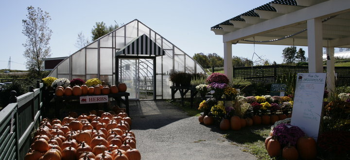 McEnroe Nursery Adjacent to the Farm Market
